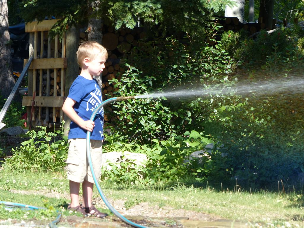 Karen said that they have plenty of water - so Q got to play with the hose to his heart's content.