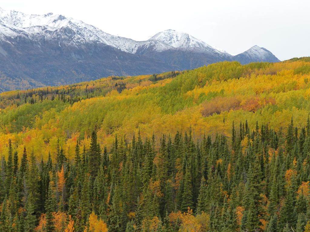 Later in the day we saw some great fall colors