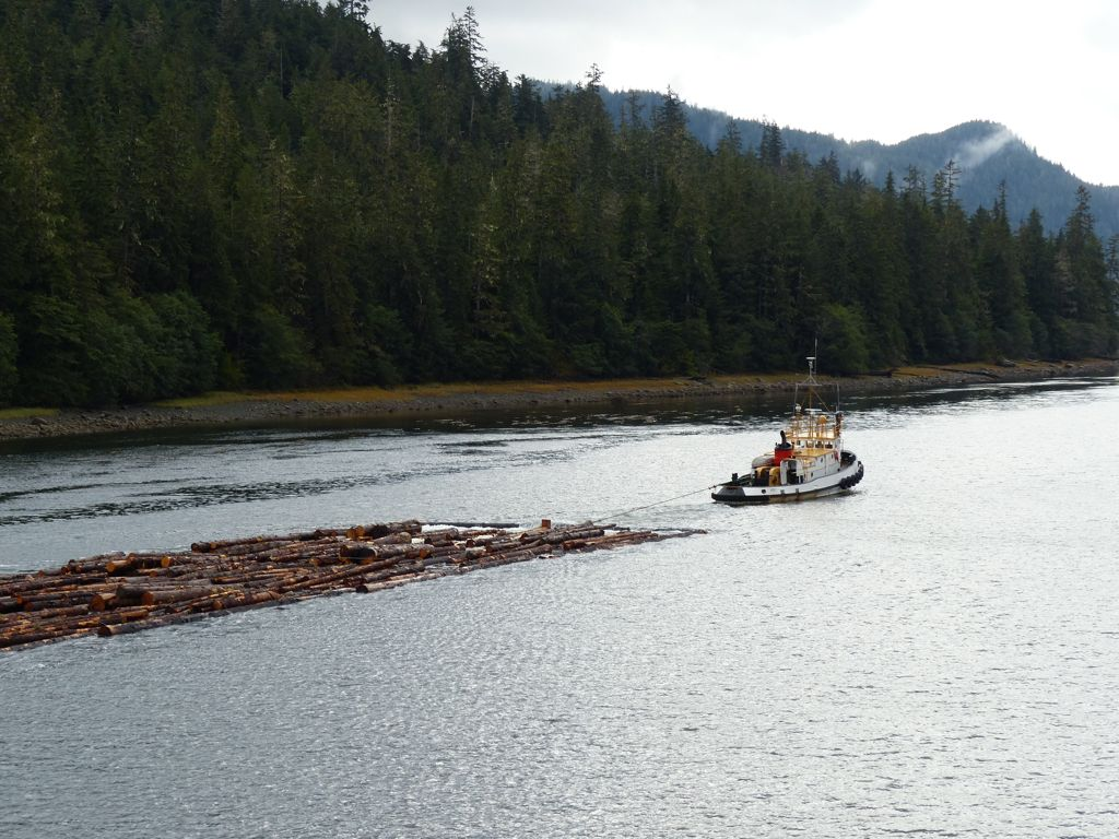 A tug boat towing a raft of logs