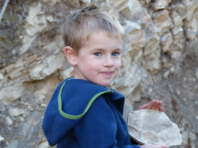 Quinn found some great fossil shells.