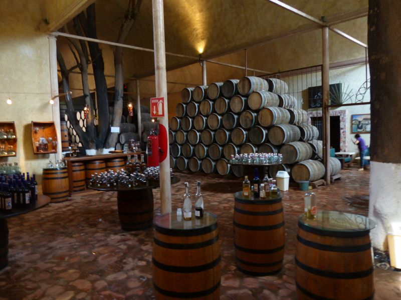 The aging cellar and tasting room