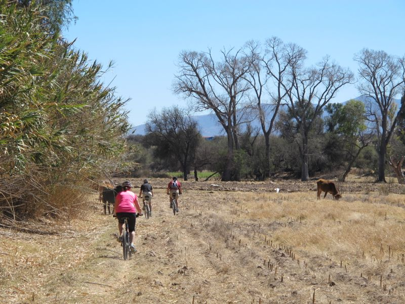 The ride took us through some farmers' fields