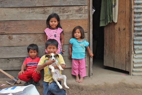 Mayan Eco Homestead is making a difference for local families.