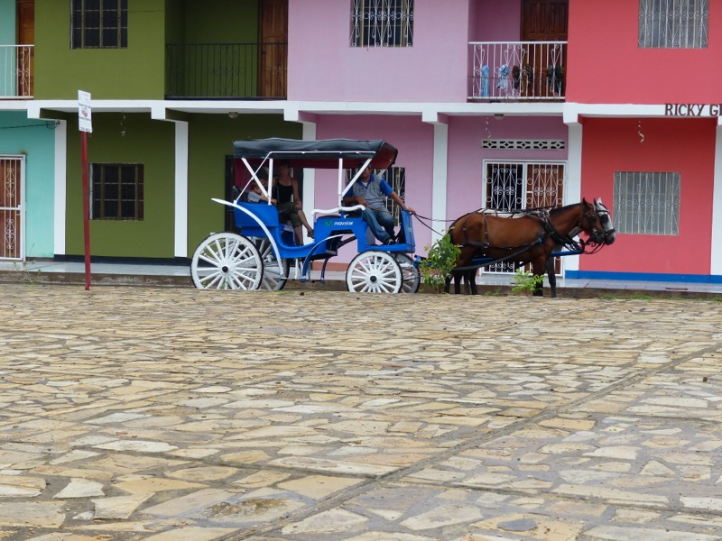 We hired a guide to give us a tour of the town in a horse-drawn carriage
