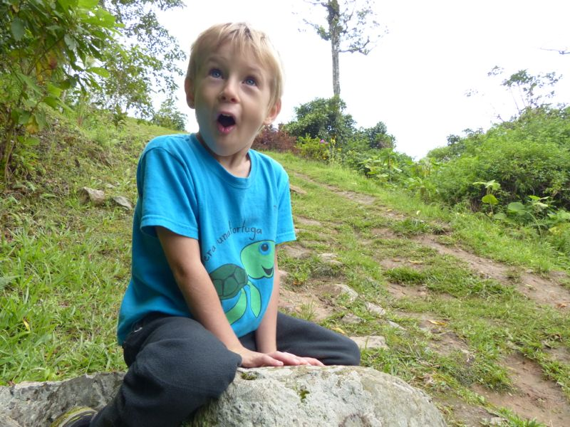 Quinn had a great time on the hike, once we convinced him to go.