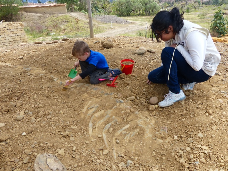 Quinn learns to excavate dinosaur bones. Honestly though he wasn't that excited by it.