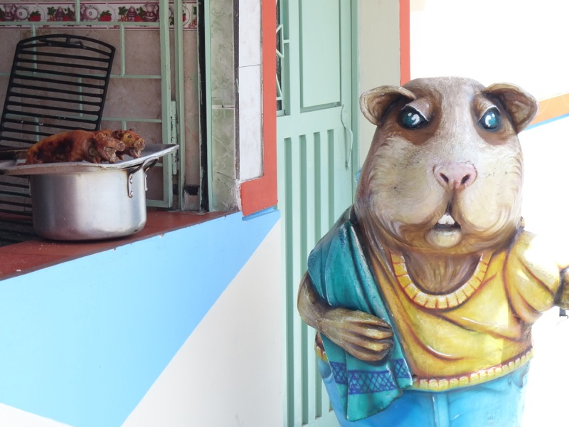 Ipiales, on the Colombia-Ecuador border, is famous for Cuy, roasted guinea pig. We didn't try any, but we did take a picture!