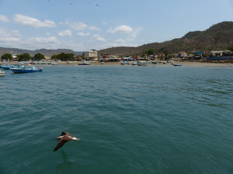 Next stop Puerto Lopez, a small fishing town. It's got a laid back atmosphere, and you can sort of tell it won't be long before big hotels start pushing out the fishermen.