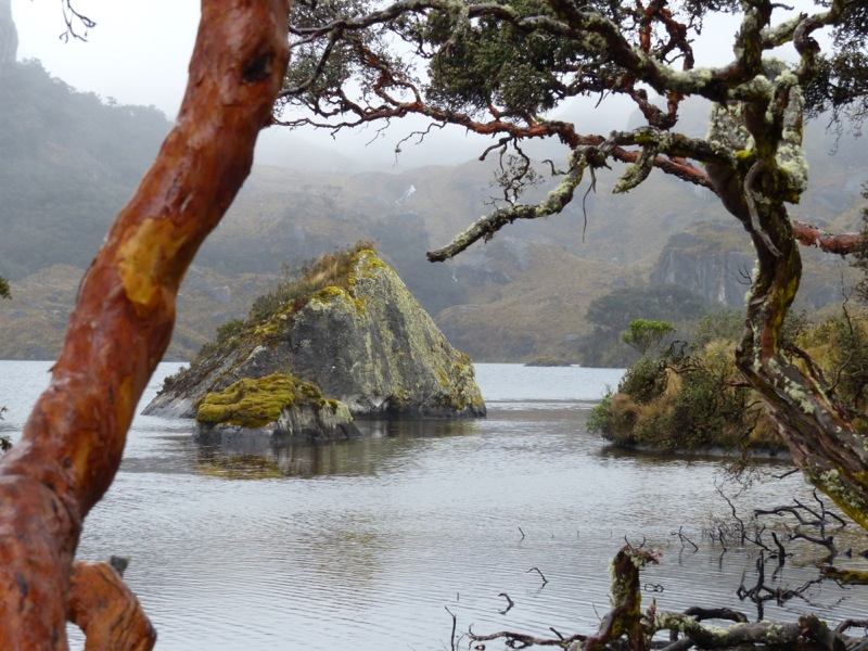 Jen and I visited Las Cajas national park, taking advantage of babysitting to go on a longer hike than we normally can.