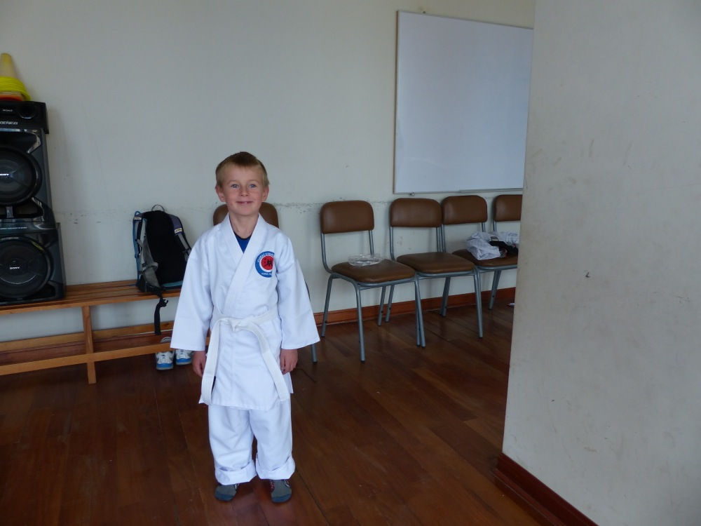 We saw a sign advertising kids workshops at the local community center, and Q decided that he wanted to try Karate.