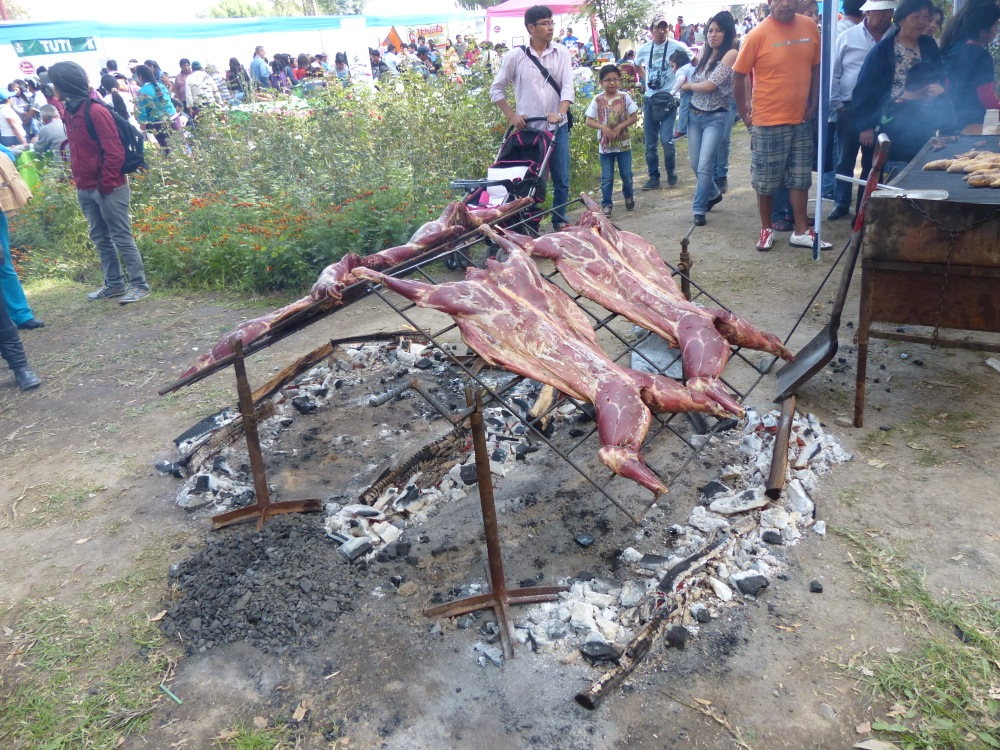 We visited a cultural fair put on by people from the Colca region. It featured lots of local foods, music, and dancing.