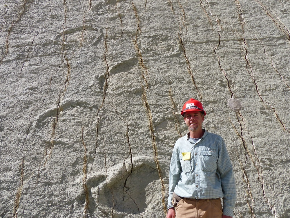 10,000 footprints have been cataloged, making this the largest dinosaur footprint site in the world.