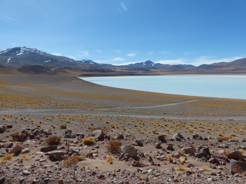 There were frozen salt lakes near the 14,000 ft pass we crossed. Lest anyone think we are hard core, we saw three long-distance cyclists on the same route.
