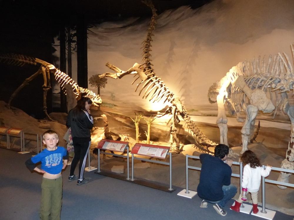 The paleontology museum in Trelew was very impressive.