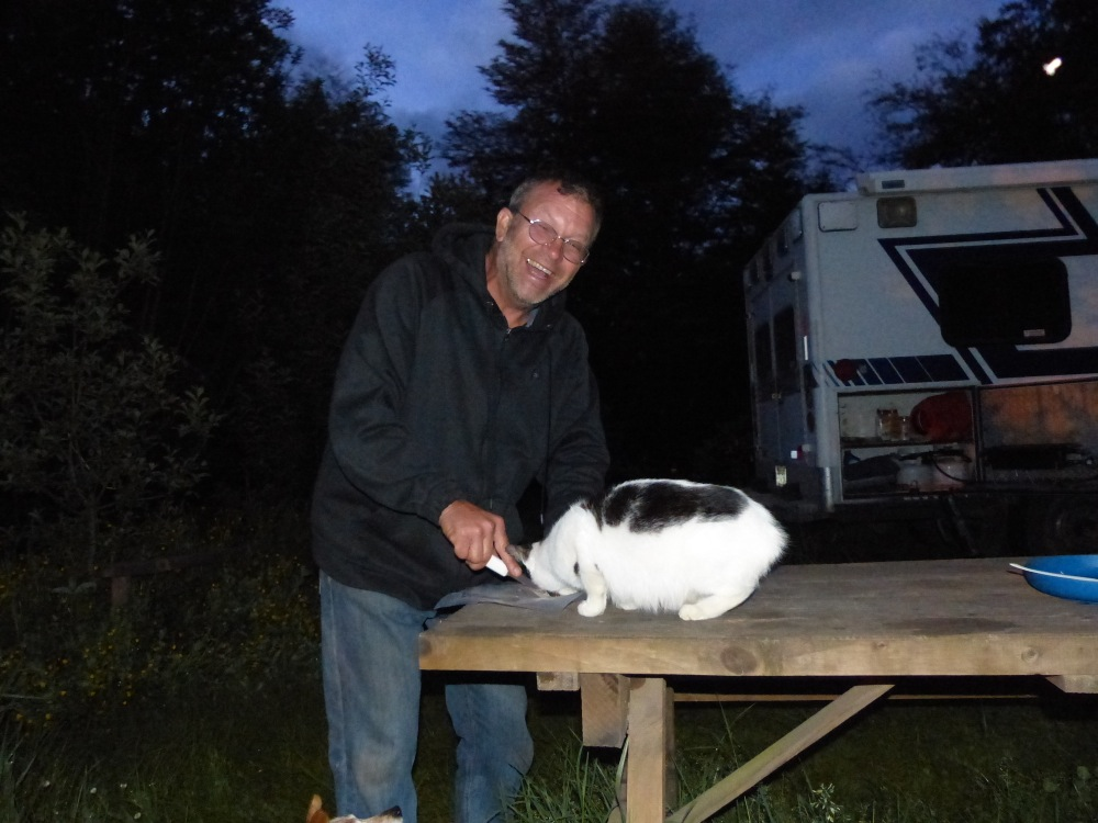 Rick grilled up a yummy salmon fillet for dinner one night. The local cats thought it was great too.
